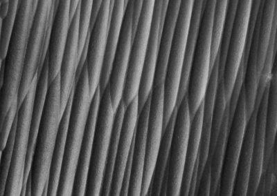 Texture Peaceful black Atelier A.LACKER